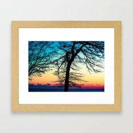 More Than I Can Say Framed Art Print