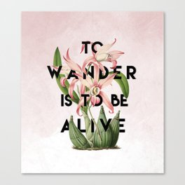 To Wander Canvas Print