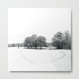 landscape view of a park cover of snow Metal Print