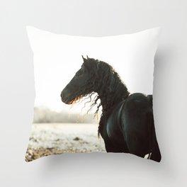 Klaas Throw Pillow