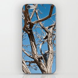 Disturbed iPhone Skin
