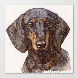 Dachshund Portrait Canvas Print