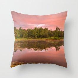 Pink Twilight Marsh Throw Pillow