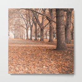 Autumn in Melbourne Metal Print