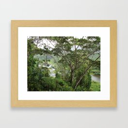 Jungle View Framed Art Print