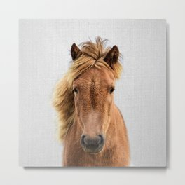 Wild Horse - Colorful Metal Print