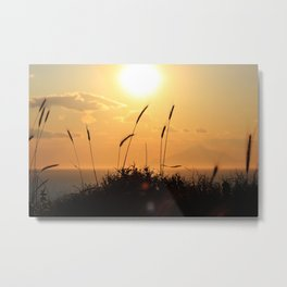 Evening Breeze Metal Print