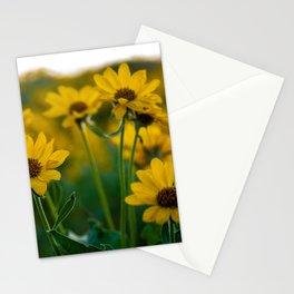 No. 2 Okanagan Sunflowers at Dawn Stationery Cards