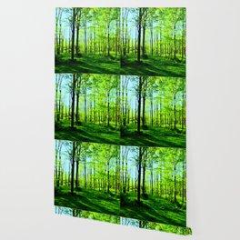 Sky Blue Morning Forest Wallpaper