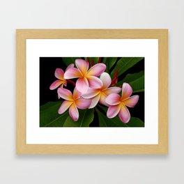Wailua Sweet Love Framed Art Print