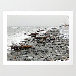 Driftwood Beach after the Storm Art Print