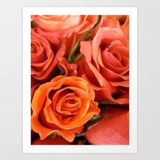 Peach Rose3 Art Print