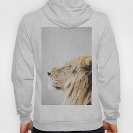 Lion Portrait - Colorful Hoody