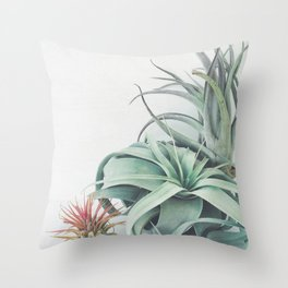 Air Plant Collection Throw Pillow