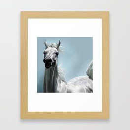 Arabian White Horse Painting Framed Art Print