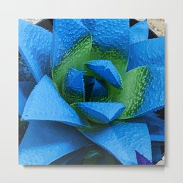 Spectacular Neon Blue Awesome Succulent Plant Metal Print