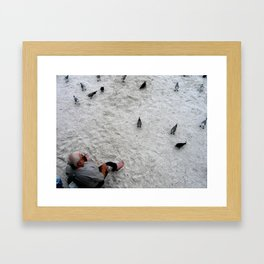 Feed the Birds - St. Pete Beach, Florida Framed Art Print