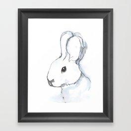 Bunny, portrait Framed Art Print