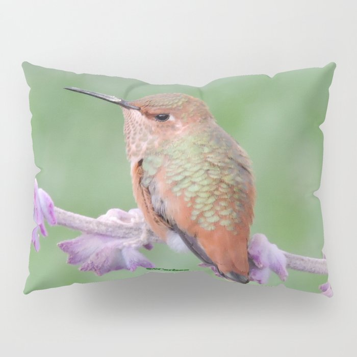 DO NOT Raid My Patch of Sage Pillow Sham