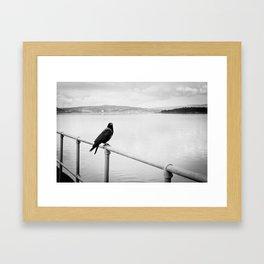 Eerie Bird Framed Art Print