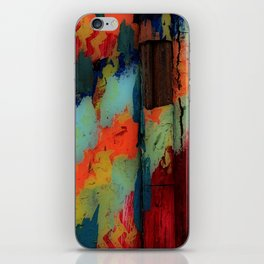 Painted Frenzy iPhone Skin