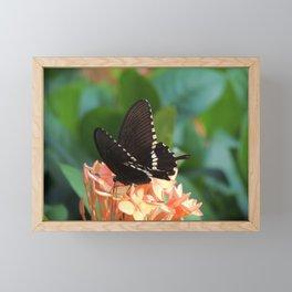 Kowloon Wings Framed Mini Art Print