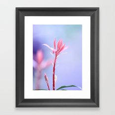 Sunkissed Spring Beauty Framed Art Print