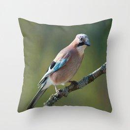 Eurasian Jay Garrulus Glandarius Throw Pillow