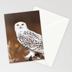 Snowy Owl Stationery Cards