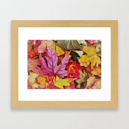 Autumn colorful leaves mountain Framed Art Print