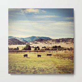 On the Landscape Metal Print