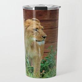 African Lioness Travel Mug