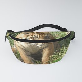 Young Tiger Fanny Pack