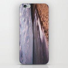 Winterton iPhone & iPod Skin