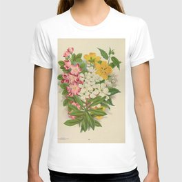 Seed Catalog Garden Floral Fruit Upright Honeysuckle Lonicera Kerria Japonica Corchorus Pearl Bush Exochorda Grandiflora T-shirt