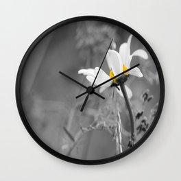White daisy on a grey day #decor #society6 Wall Clock