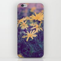 woodstock iPhone & iPod Skins featuring Woodstock Daisy  by Scotty Photography