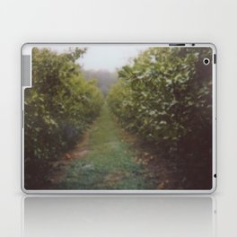 Orchard Row Laptop & iPad Skin