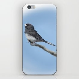 Junco iPhone Skin