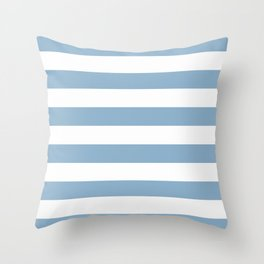 Denim Stripe Throw Pillow