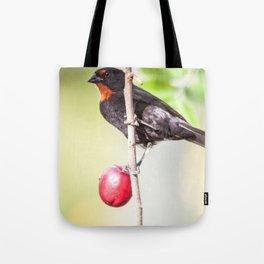 plum Eater Tote Bag