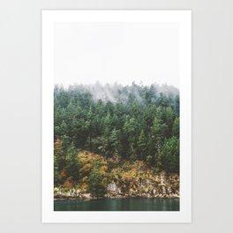 Foggy Vancouver Island Art Print