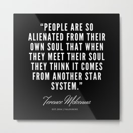 26 |  Terence Mckenna Quote 190516 Metal Print