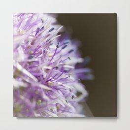 Flower Two Metal Print