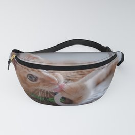 Playtime for Leo Mar Suerte Fanny Pack