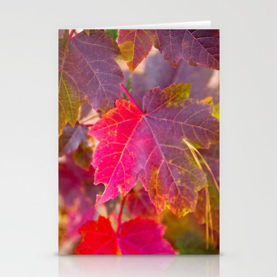 Fall Party Stationery Cards
