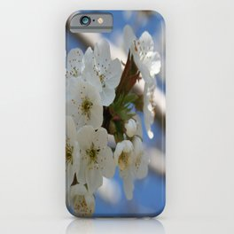 Beautiful Delicate Cherry Blossom Flowers iPhone Case