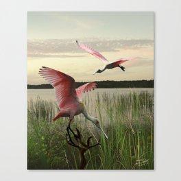 The Spoonbills of Lake Saint George Canvas Print