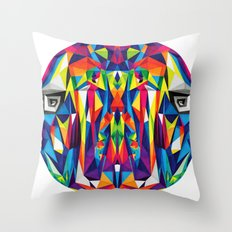 Colors For Sale Throw Pillow