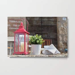 excellent photo for the modern classic and shabby chic house Metal Print
